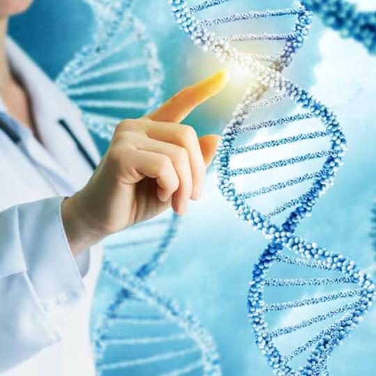 medicina regenerativa ceprofis